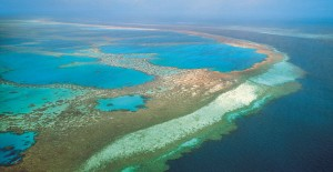 great-barrier-reef-300x155